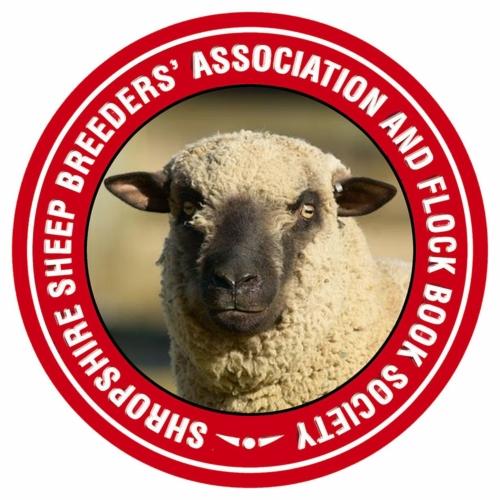 Shropshire sheep, head logo